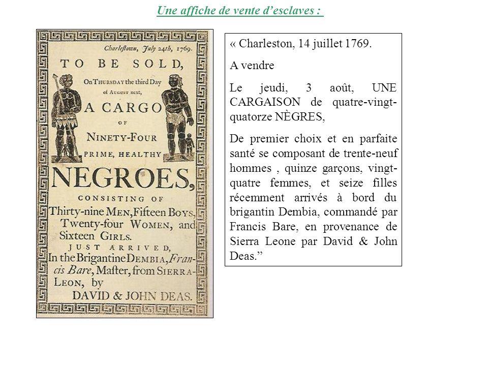 Une affiche de vente d'esclaves :