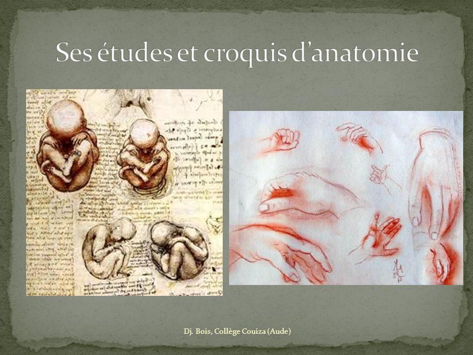Ses études et croquis d'anatomie