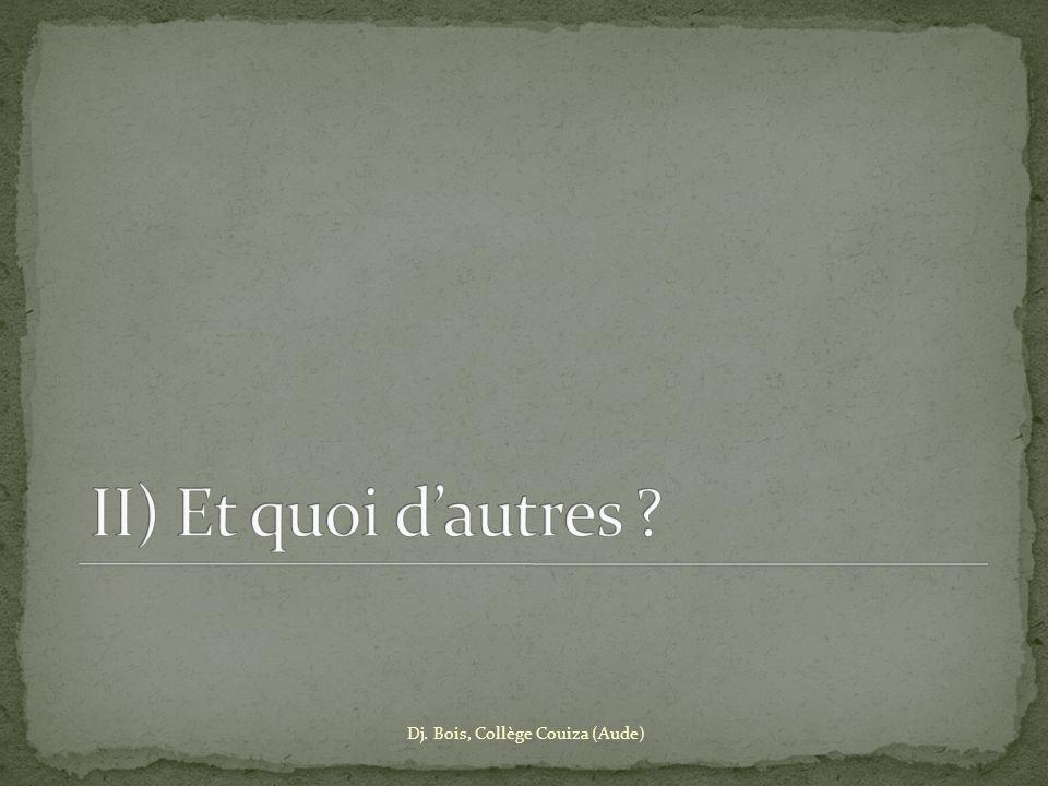 II) Et quoi d'autres Dj. Bois, Collège Couiza (Aude)