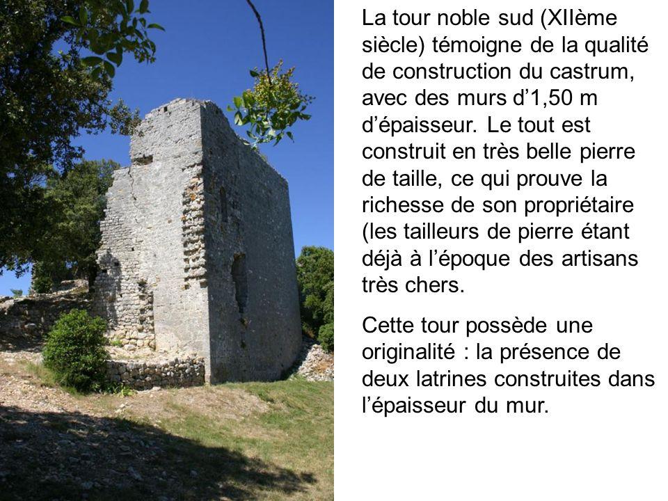 La tour noble sud (XIIème siècle) témoigne de la qualité de construction du castrum, avec des murs d'1,50 m d'épaisseur. Le tout est construit en très belle pierre de taille, ce qui prouve la richesse de son propriétaire (les tailleurs de pierre étant déjà à l'époque des artisans très chers.