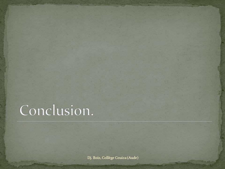 Conclusion. Dj. Bois, Collège Couiza (Aude)