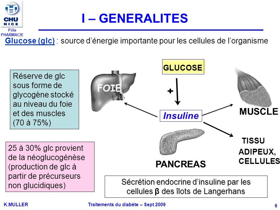 I – GENERALITES + FOIE MUSCLE Insuline PANCREAS