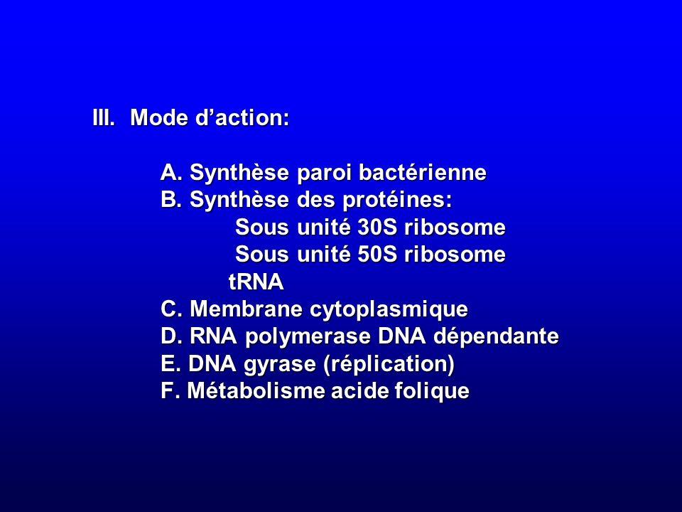 III. Mode d'action:. A. Synthèse paroi bactérienne. B