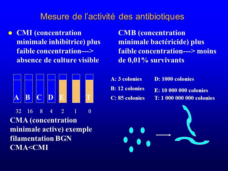 Mesure de l'activité des antibiotiques
