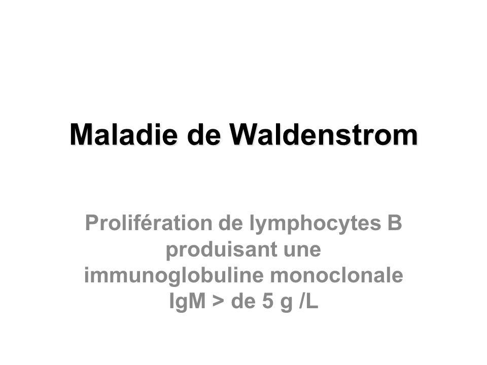 Maladie de Waldenstrom