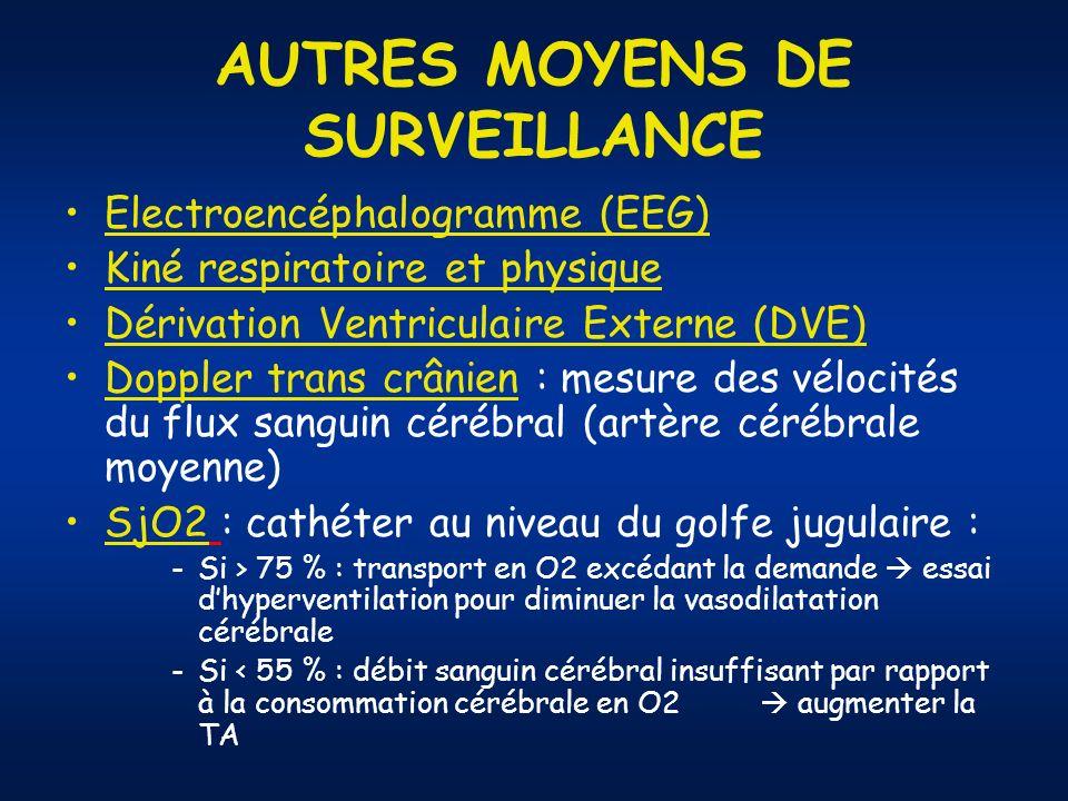 AUTRES MOYENS DE SURVEILLANCE
