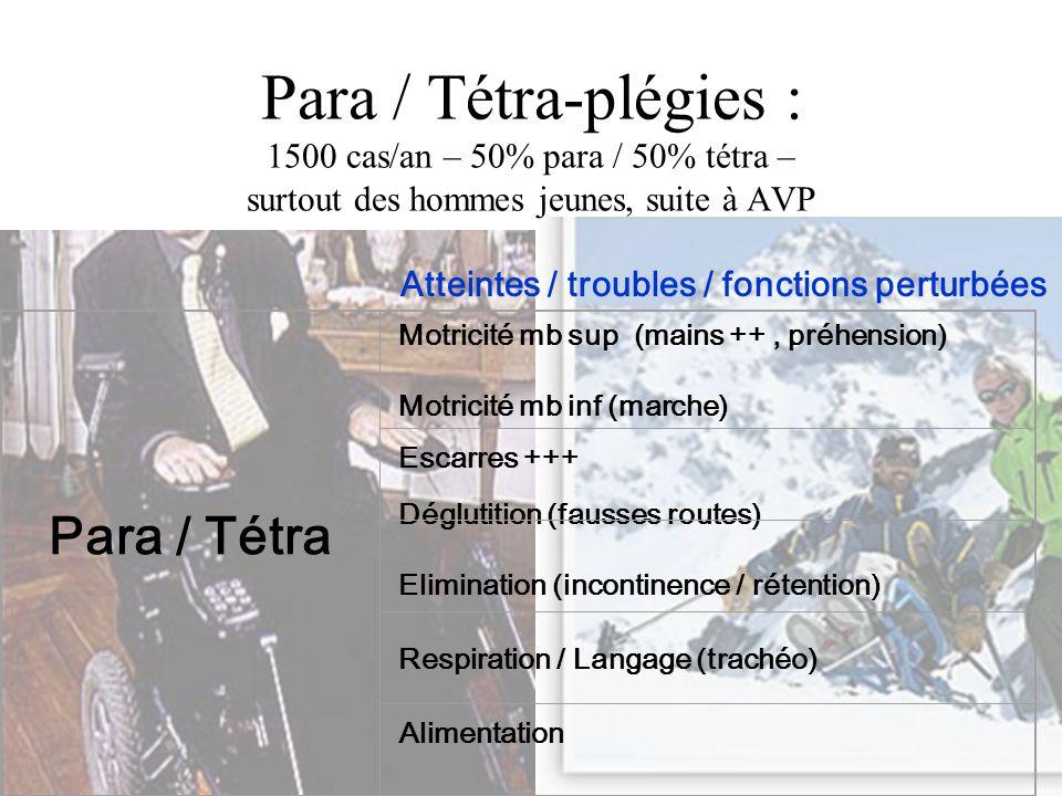 Para / Tétra-plégies : 1500 cas/an – 50% para / 50% tétra – surtout des hommes jeunes, suite à AVP