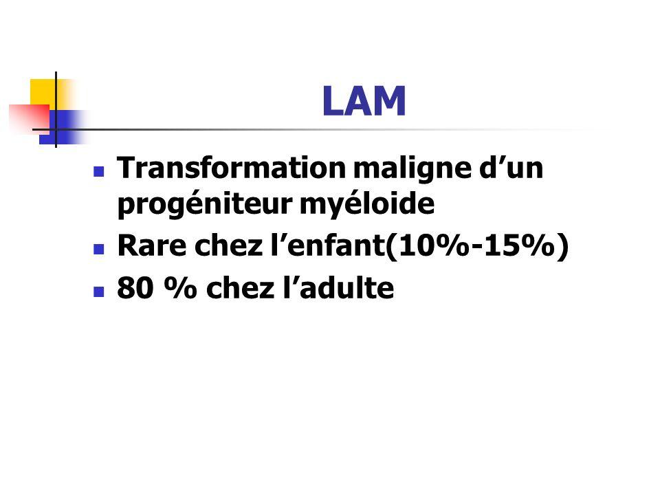 LAM Transformation maligne d'un progéniteur myéloide