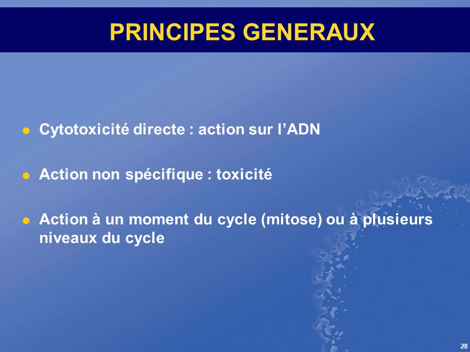 PRINCIPES GENERAUX Cytotoxicité directe : action sur l'ADN
