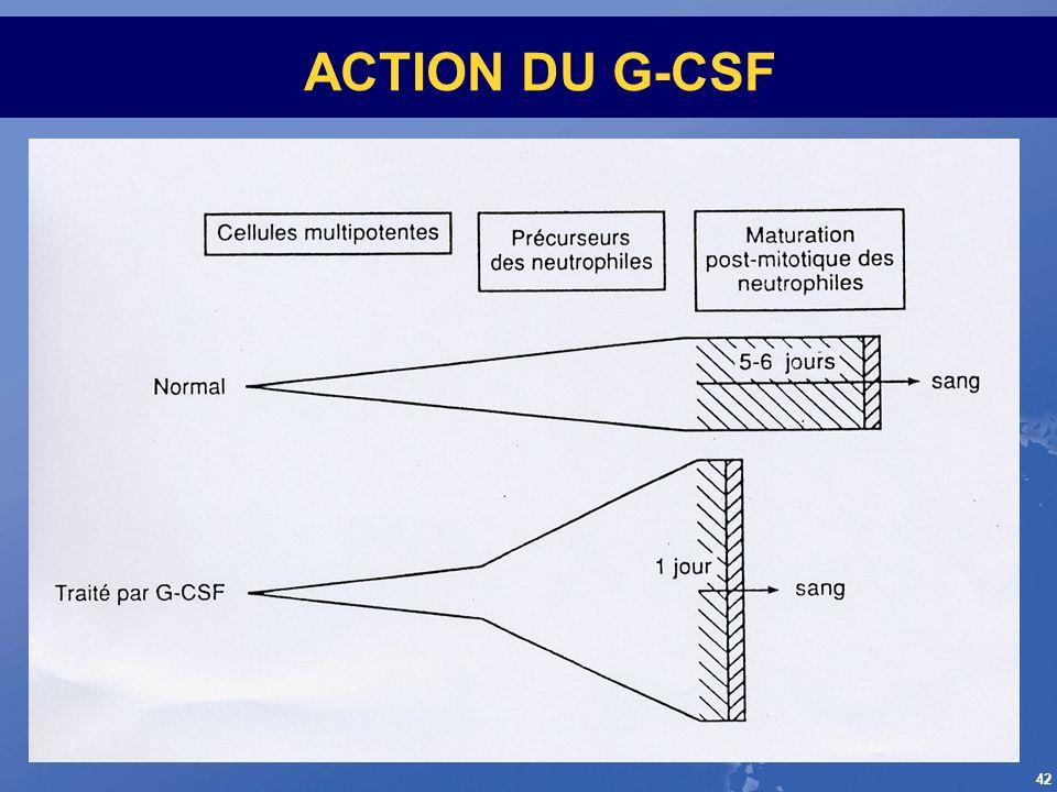 ACTION DU G-CSF