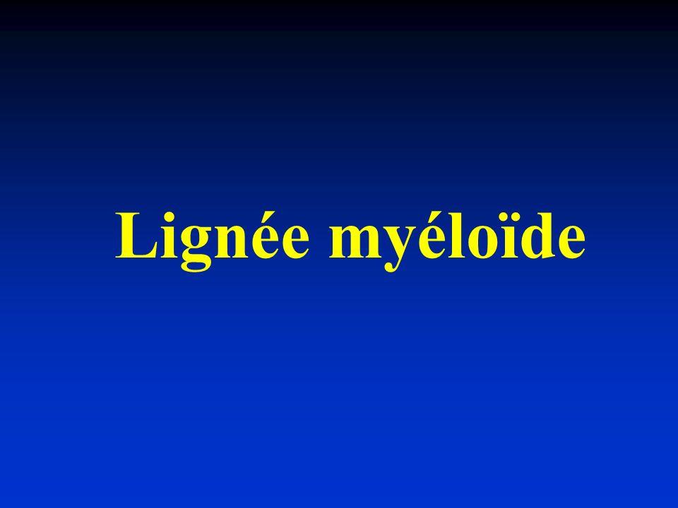 Lignée myéloïde