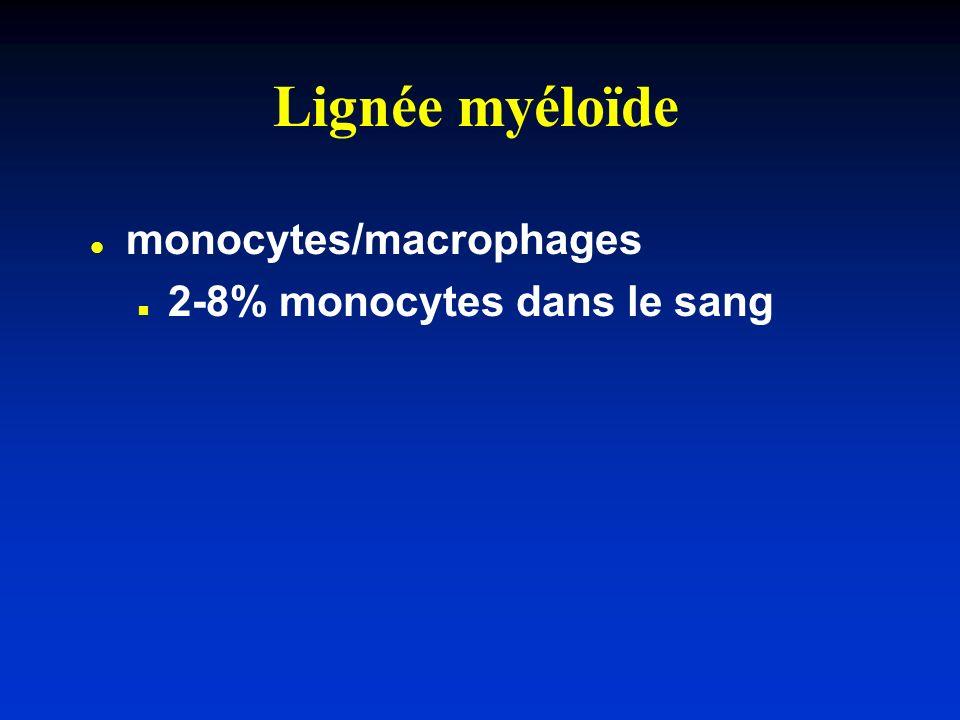 Lignée myéloïde monocytes/macrophages 2-8% monocytes dans le sang