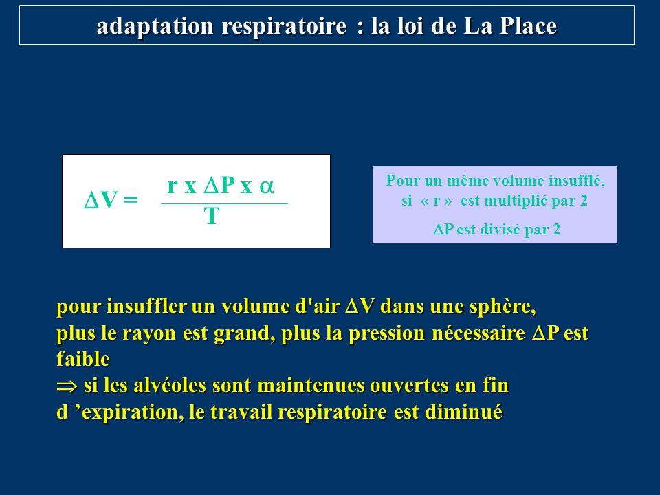 adaptation respiratoire : la loi de La Place