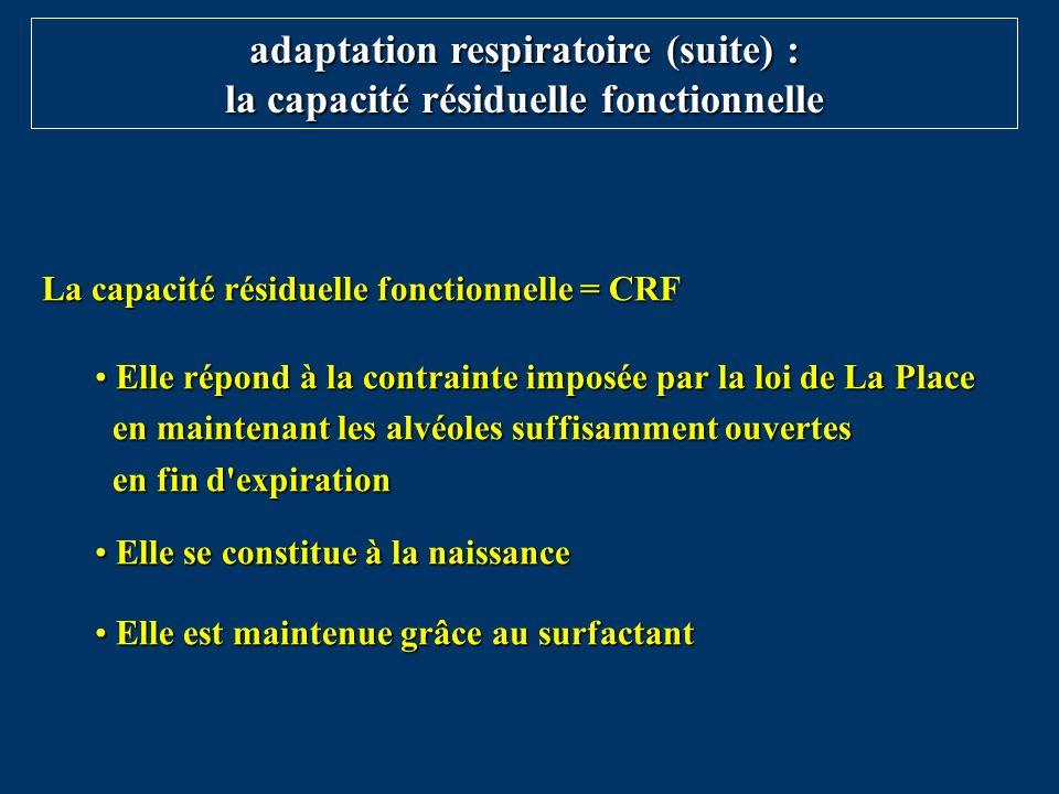 adaptation respiratoire (suite) : la capacité résiduelle fonctionnelle