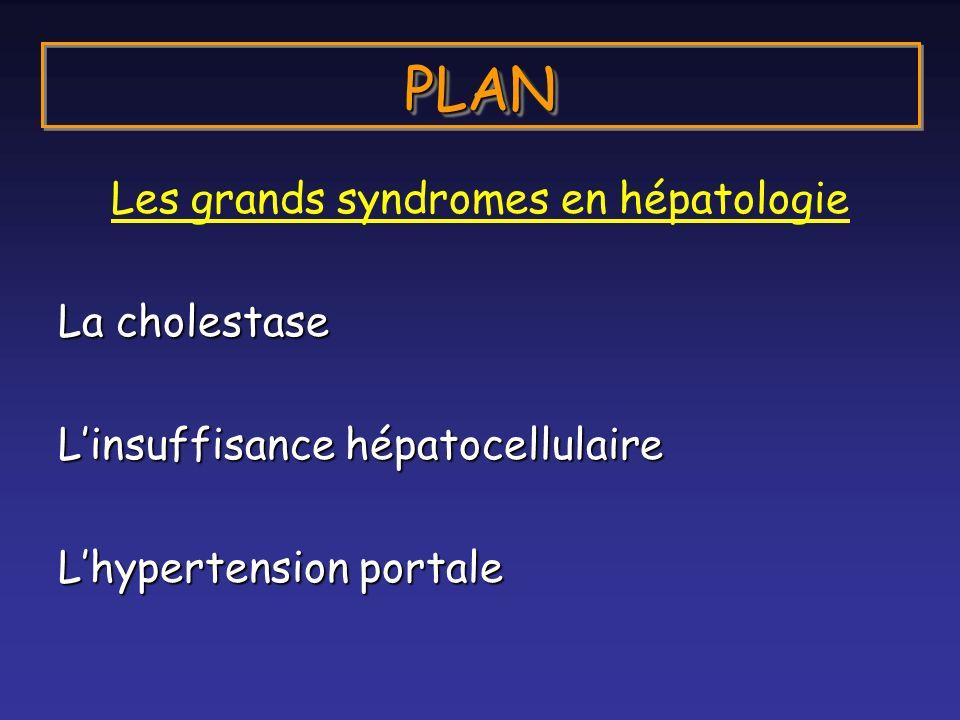 Les grands syndromes en hépatologie