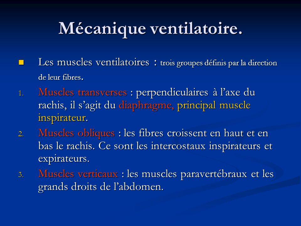 Mécanique ventilatoire.