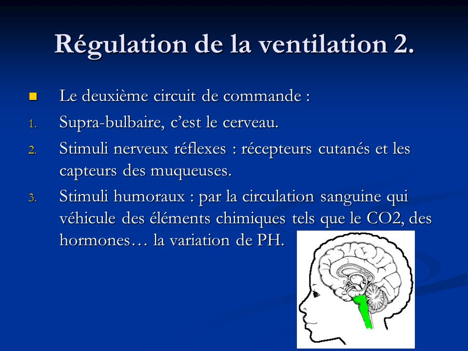 Régulation de la ventilation 2.