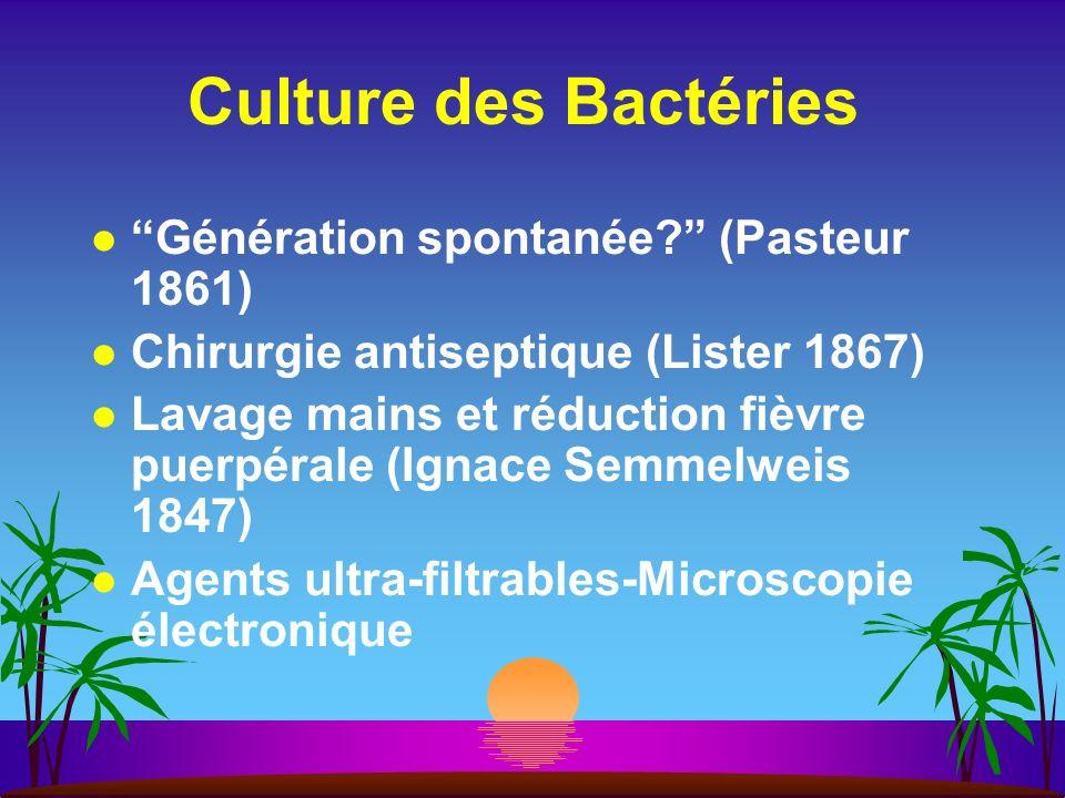 Culture des Bactéries Génération spontanée (Pasteur 1861)
