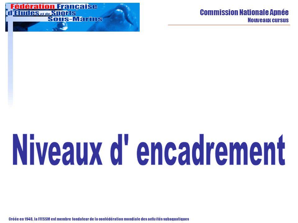 Niveaux d encadrement Commission Nationale Apnée Nouveaux cursus