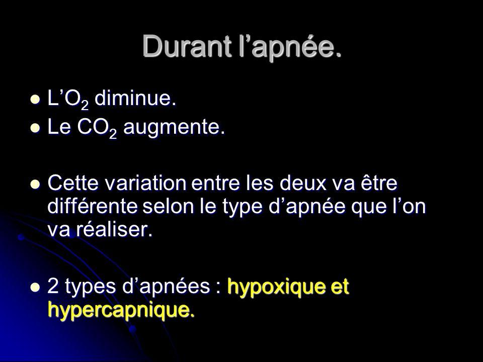 Durant l'apnée. L'O2 diminue. Le CO2 augmente.