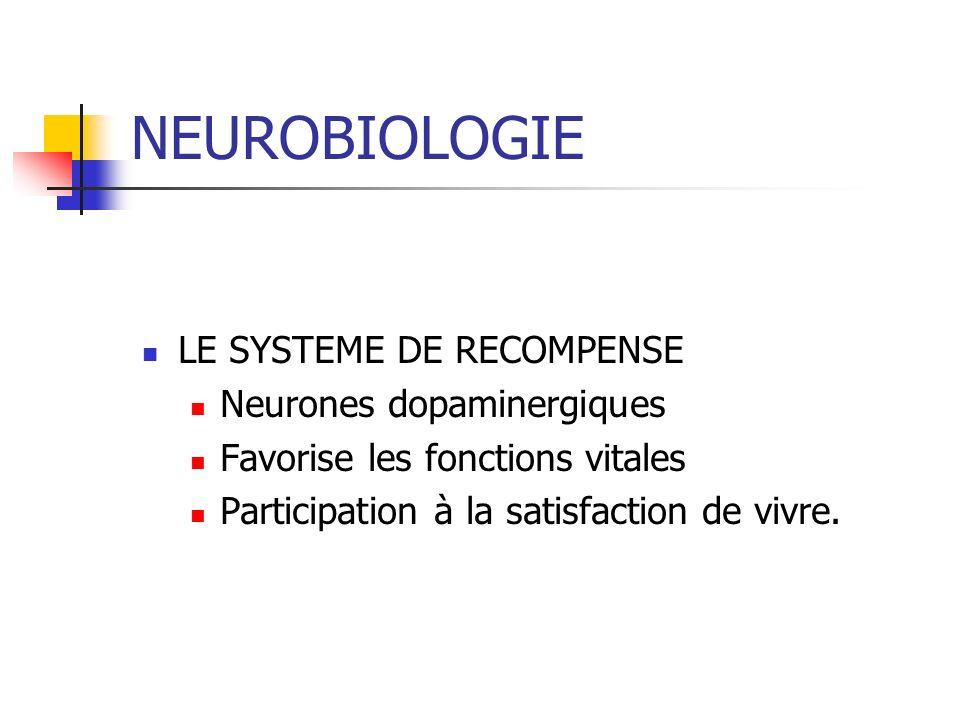NEUROBIOLOGIE LE SYSTEME DE RECOMPENSE Neurones dopaminergiques