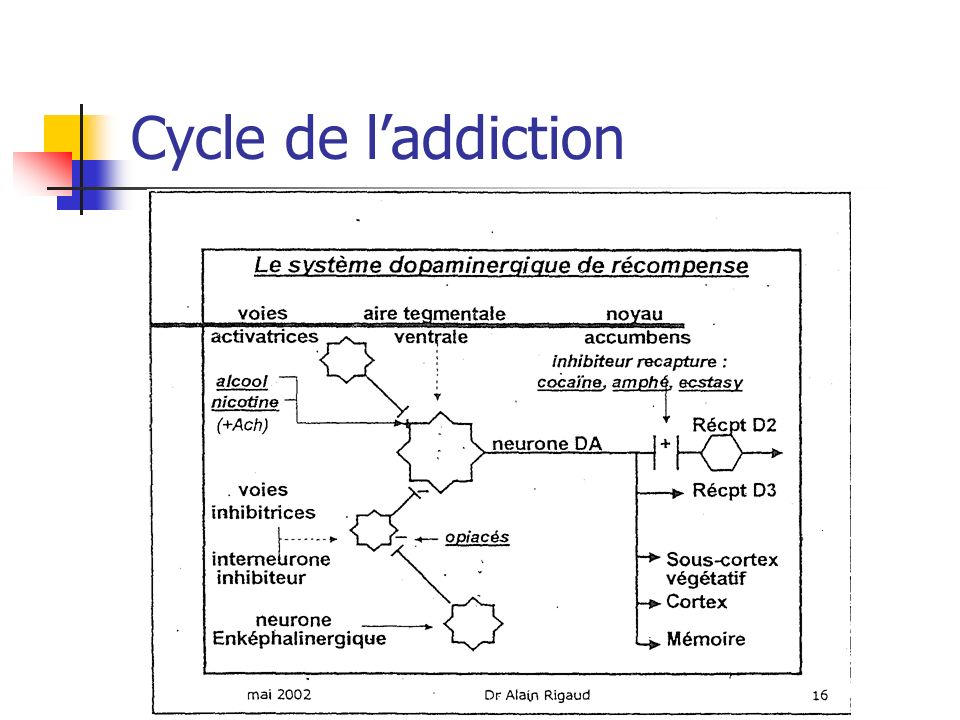Cycle de l'addiction