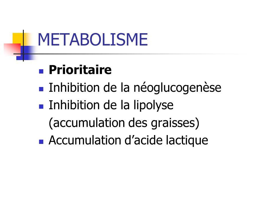 METABOLISME Prioritaire Inhibition de la néoglucogenèse