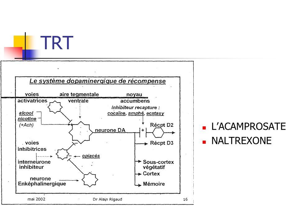 TRT L'ACAMPROSATE NALTREXONE