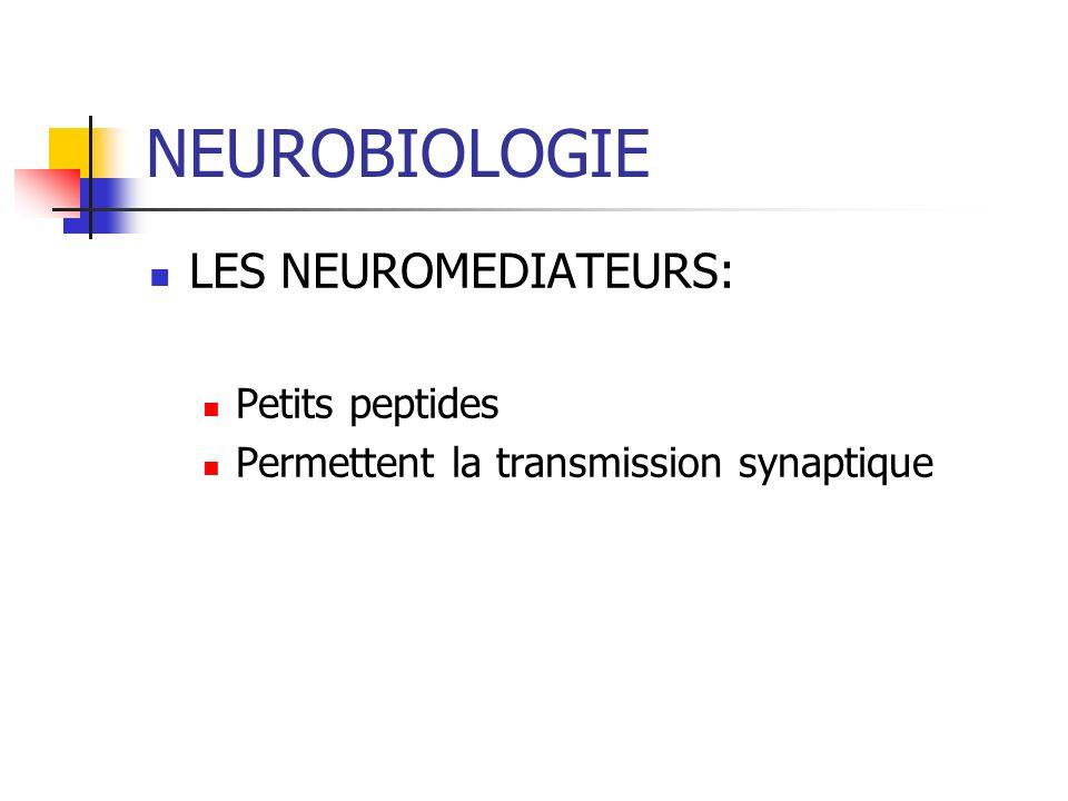 NEUROBIOLOGIE LES NEUROMEDIATEURS: Petits peptides
