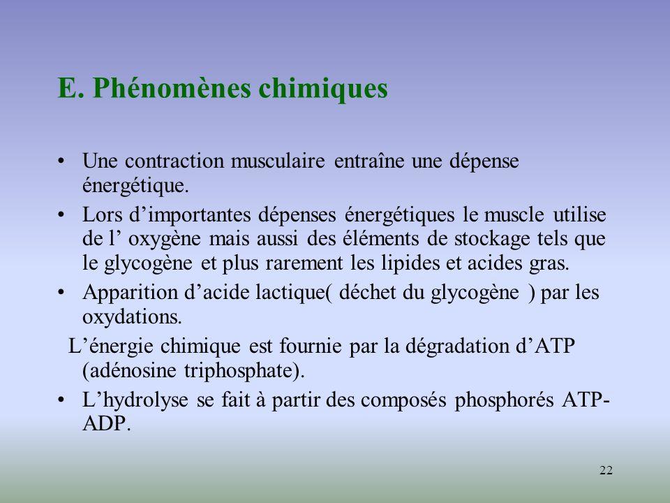 E. Phénomènes chimiques