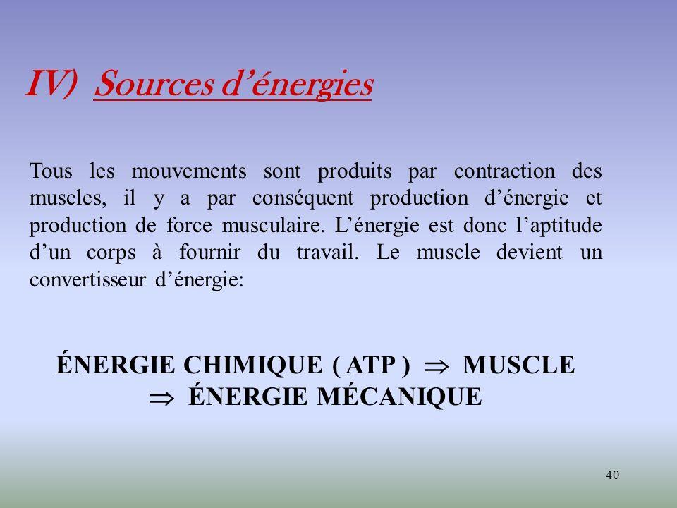 ÉNERGIE CHIMIQUE ( ATP )  MUSCLE  ÉNERGIE MÉCANIQUE