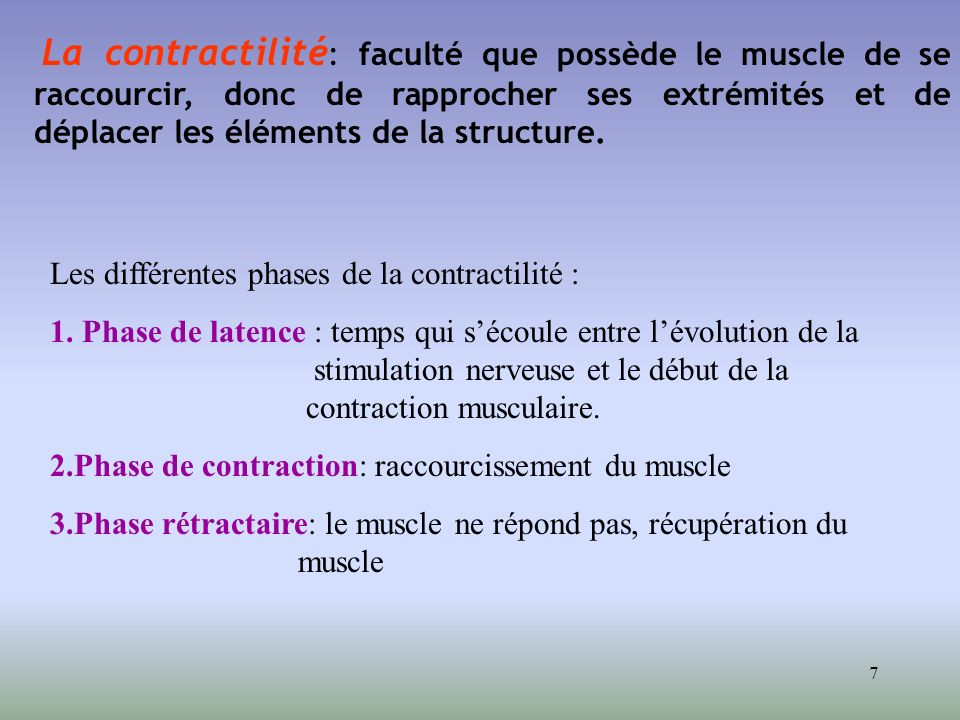 La contractilité: faculté que possède le muscle de se raccourcir, donc de rapprocher ses extrémités et de déplacer les éléments de la structure.