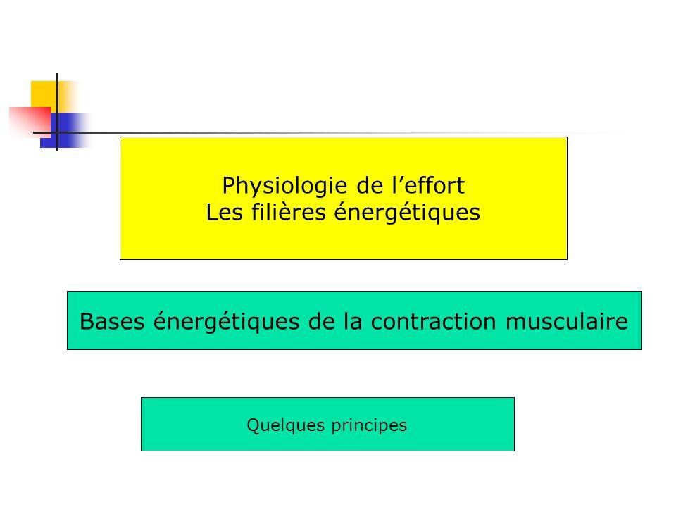 Physiologie de l'effort Les filières énergétiques