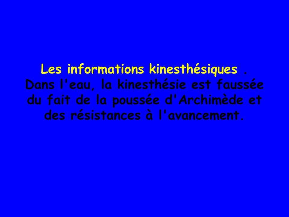 Les informations kinesthésiques