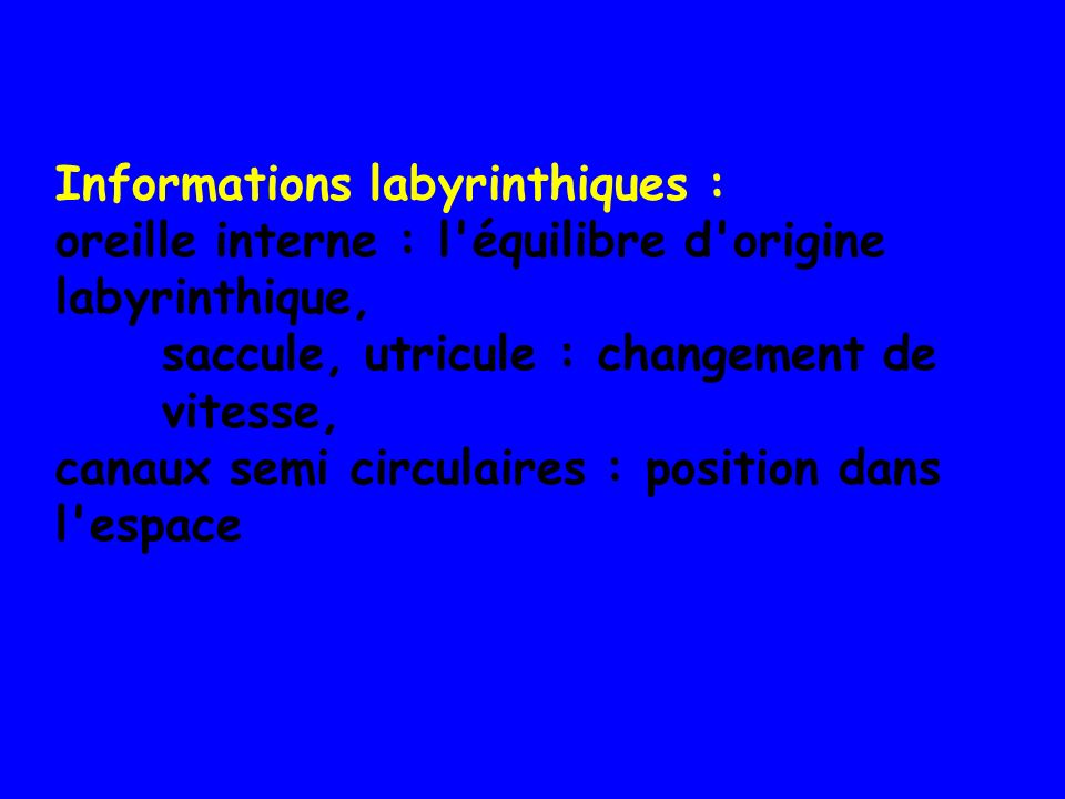 Informations labyrinthiques :