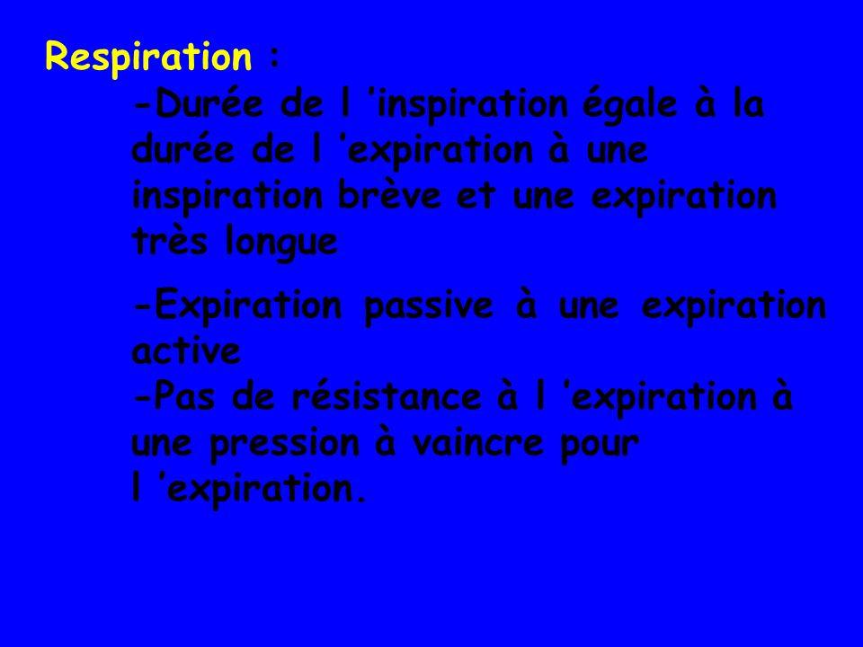Respiration : -Durée de l 'inspiration égale à la durée de l 'expiration à une inspiration brève et une expiration très longue.