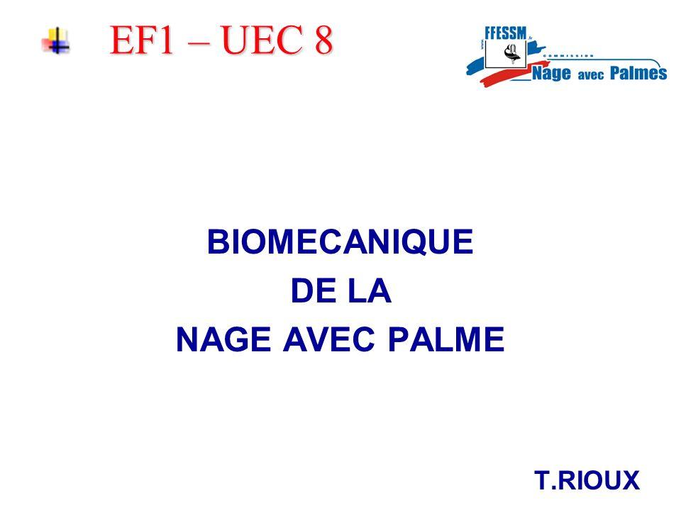 EF1 – UEC 8 BIOMECANIQUE DE LA NAGE AVEC PALME T.RIOUX