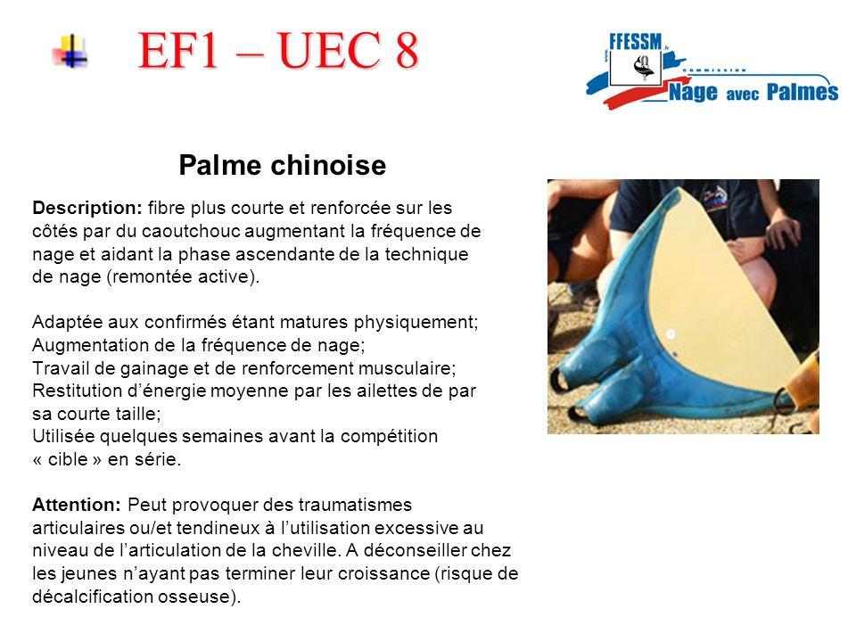 EF1 – UEC 8 Palme chinoise. Description: fibre plus courte et renforcée sur les. côtés par du caoutchouc augmentant la fréquence de.