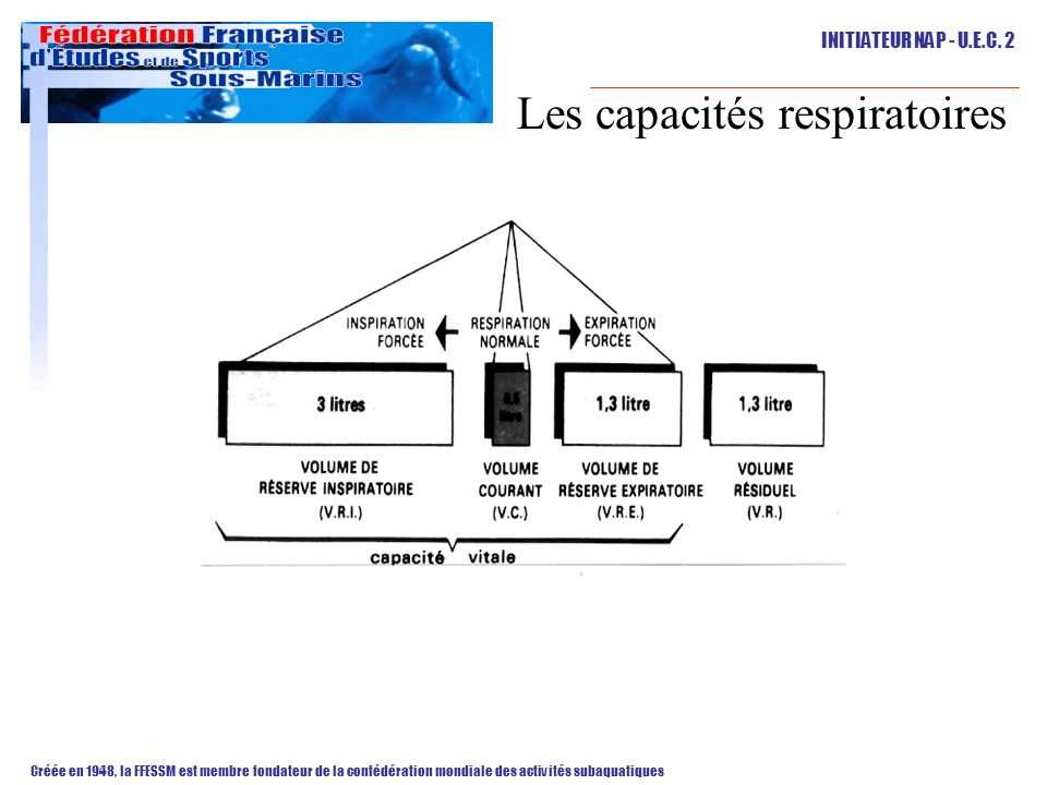 Les capacités respiratoires