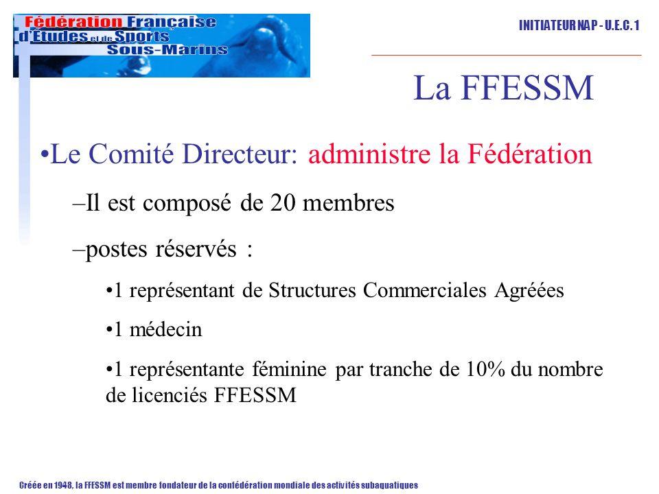 La FFESSM Le Comité Directeur: administre la Fédération