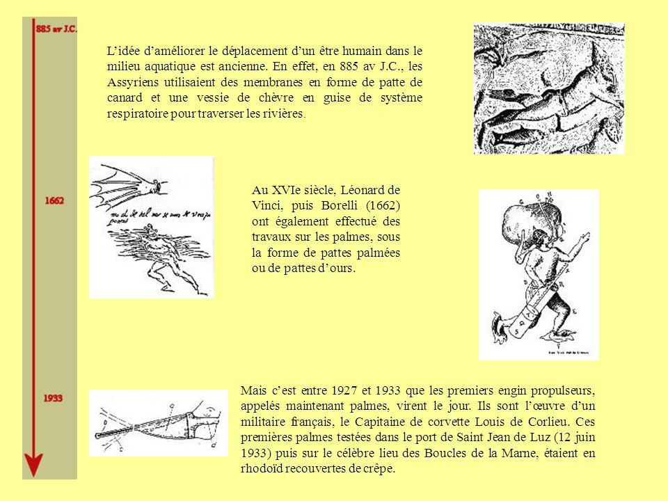 Petit historique de la nage avec palmes ppt video online - Meteo saint jean pied de port 12 jours ...