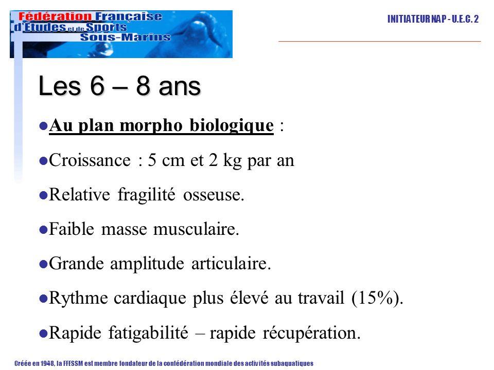 Les 6 – 8 ans Au plan morpho biologique :