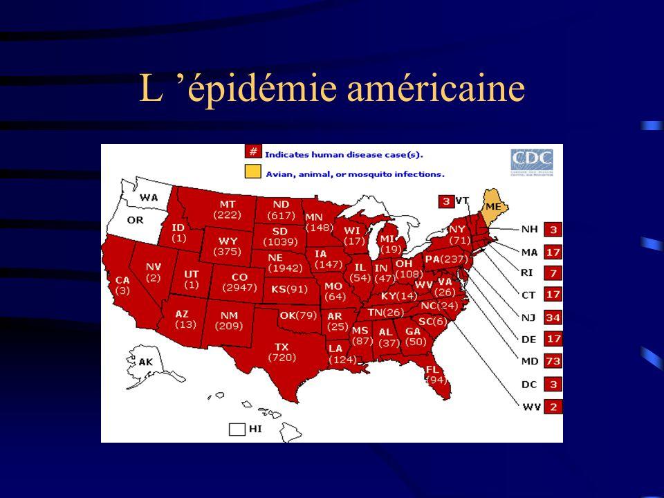 L 'épidémie américaine