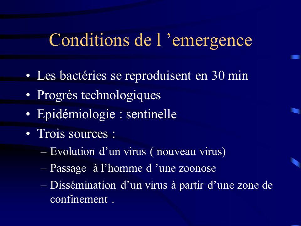 Conditions de l 'emergence