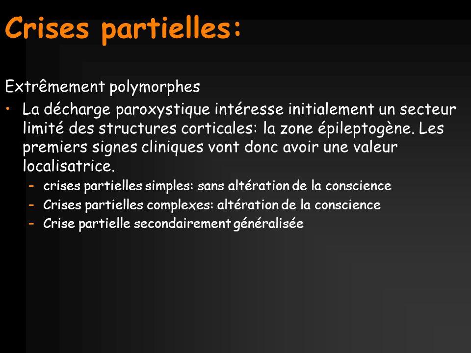 Crises partielles: Extrêmement polymorphes