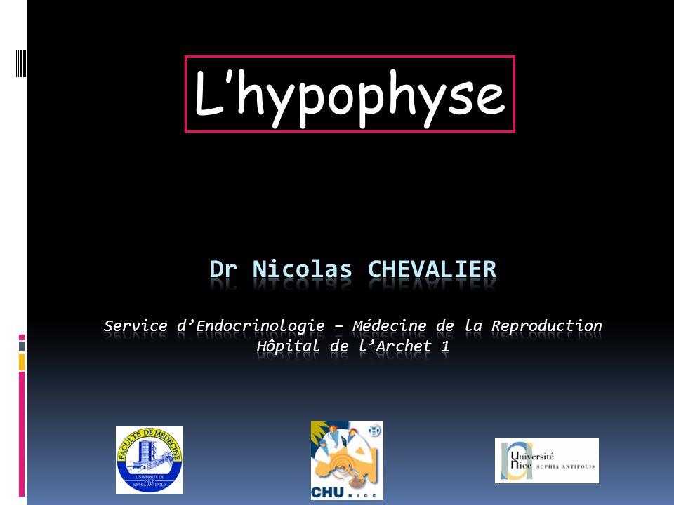 L'hypophyse Dr Nicolas CHEVALIER Service d'Endocrinologie – Médecine de la Reproduction Hôpital de l'Archet 1.