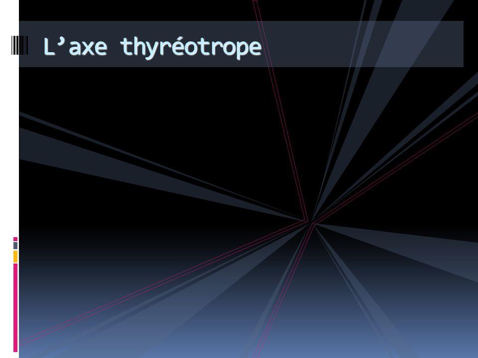 L'axe thyréotrope