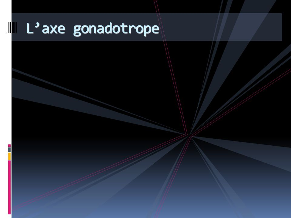 L'axe gonadotrope