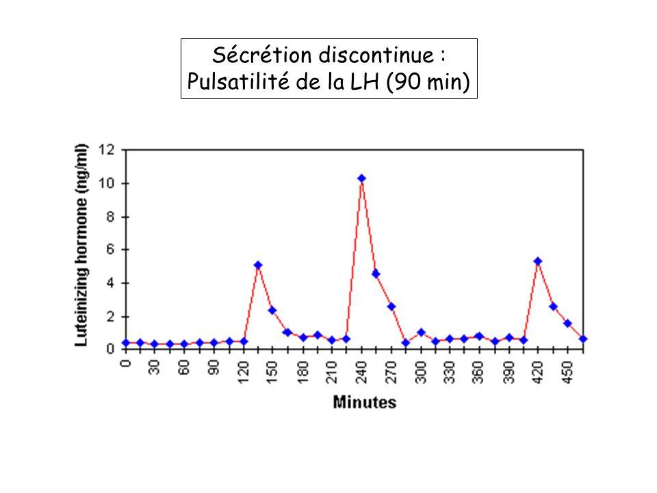 Sécrétion discontinue : Pulsatilité de la LH (90 min)
