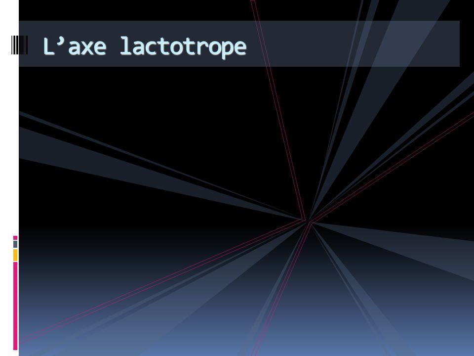 L'axe lactotrope